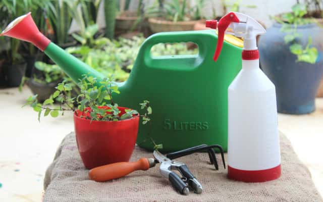 Garden Maintenance and supplies