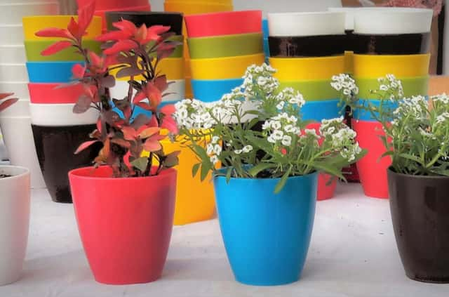 Buy pots and garden accessories